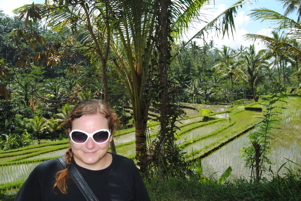 Rice terrace Ubud