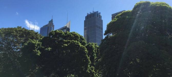 Royal Botanic Garden, Sydney.
