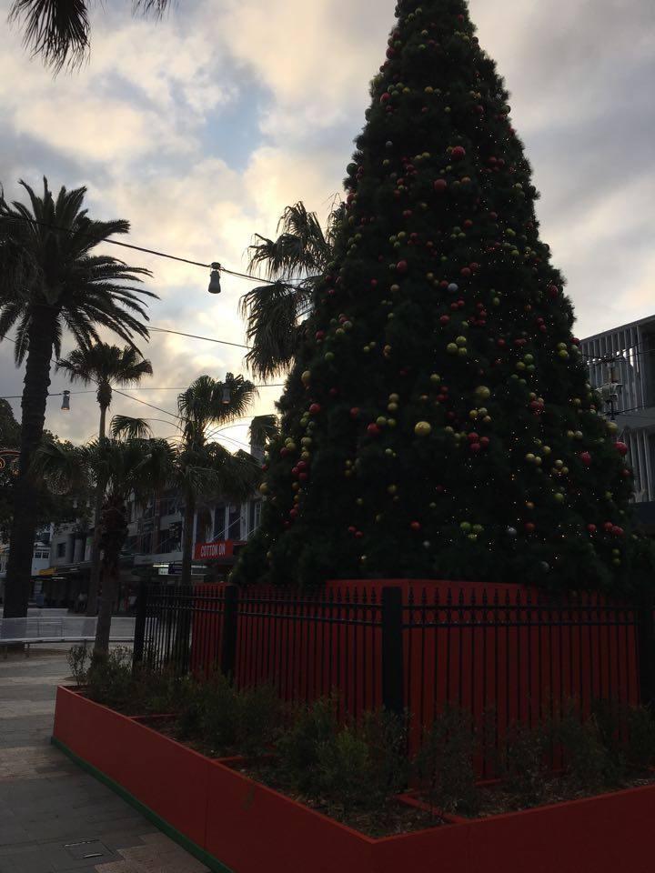 The Corso Xmas tree