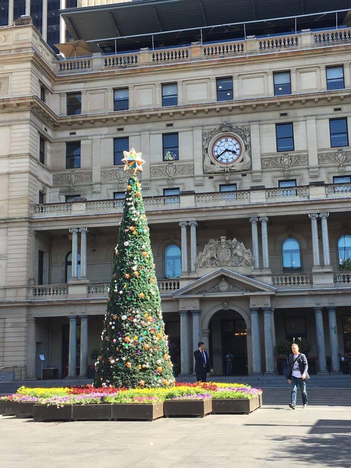 Customs house xmas tree sydney